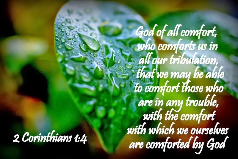 Image result for bible prayers for blessings unlimited bible