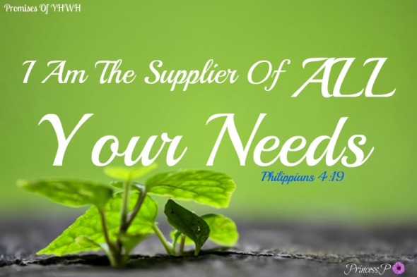 i-am-the-supplier-of-all-your-needs-philippians-4_19